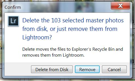 Delete photos from Adobe Lightroom catalog